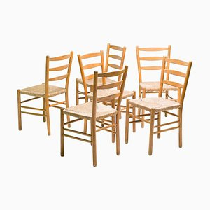 Dining Chairs by Cees Braakman, Set of 6