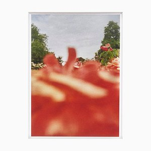Contemporary Spanish Flower Giclée Druck von David Urbano