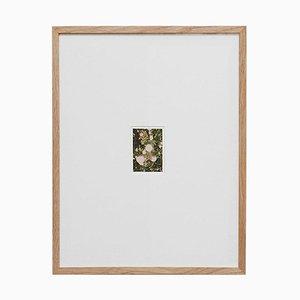 David Urbano, The Rose Garden Nº 32, Contemporary Photography