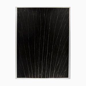 Enrico Garzaro, Flora Photogram, Black and White Contemporary Photography