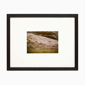 David Urbano, Fotografía de la tierra contemporánea, Rebobinar o adelante N04