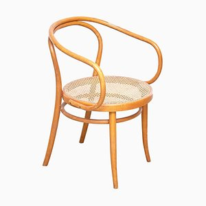 Bentwood Armchair from Ligna