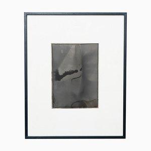 Adrian, Contemporary Photography, 2013, Gerahmt