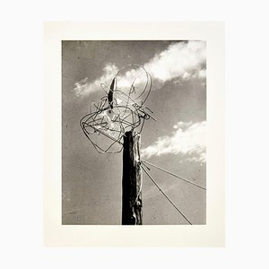 Licht-Raum Modulator Fotografie 6/6 von László Moholy-Nagy