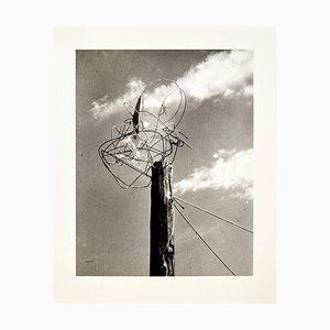 Licht-Raum Modulator Photograph 6/6 by László Moholy-Nagy