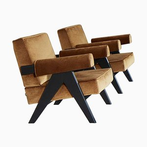 Model 053 Capitol Complex Armchairs by Pierre Jeanneret for Cassina, Set of 2