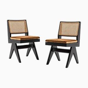 Modell 055 Capitol Complex Stühle von Pierre Jeanneret für Cassina, 2er Set