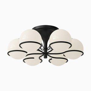 Lampe Modell 2042/6 Schwarze Halterung von Gino Sarfatti