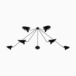 Black 7 Fixed Arms Spider Ceiling Lamp by Serge Mouille