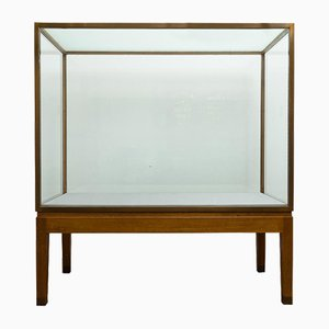 Early 20th Century Museum Cabinet