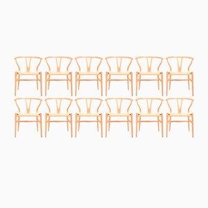 Wishbone Stühle aus patinierter Eiche von Hans Wegner für Carl Hansen & Søn, 1960er, 12er Set