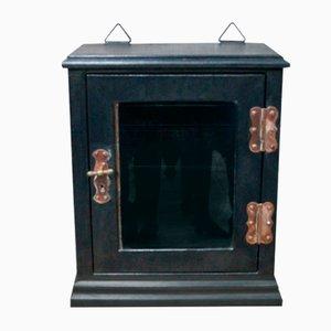Antique Leaded Steel Glazed Medical Cabinet