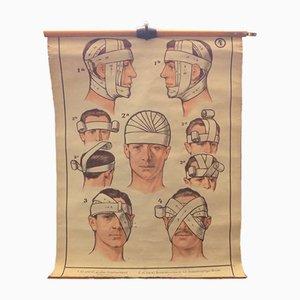 Poster di insegnamento medico, anni '30