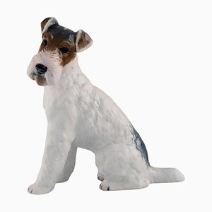Wire Haired Fox Terrier in Porcelain from Rosenthal Group