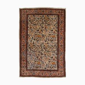 Floral Kashmir Carpet in Beige with Border
