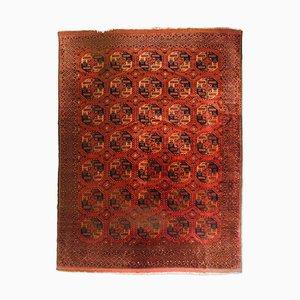 Tappeto Turkmen geometrico rosso con bordo