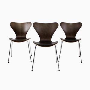 Chaises Série 7 par Arne Jacobsen, Set de 3