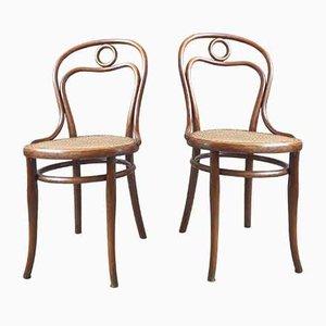 Chaises N°19 par Michael Thonet pour Thonet, Set de 2