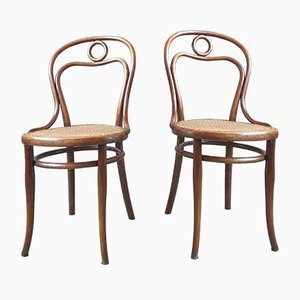 N ° 19 Stühle von Michael Thonet für Thonet, 2er Set