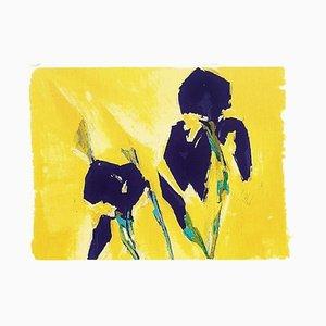 Bernd Zimmer, Iris, Color Screenprint