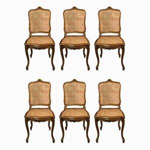 Louis XV Stühle aus massivem Nussholz, 1940er, 6er Set