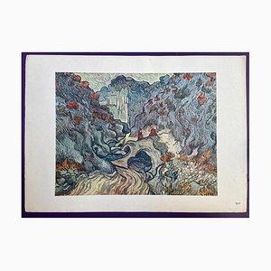 Vincent van Gogh, Lithographie XIV, 1950, Papier
