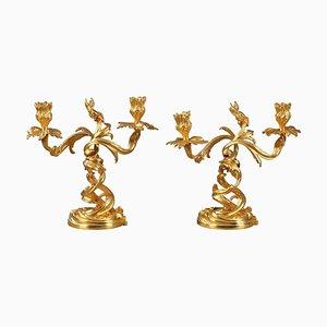 Candélabres en Bronze Doré de Style Louis XV, 19ème Siècle, Set de 2