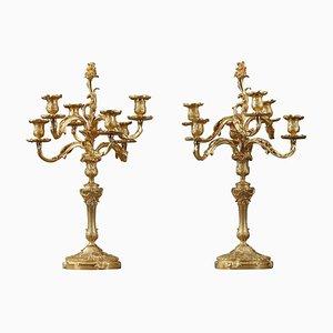 Candelabros estilo Rocaille de bronce dorado