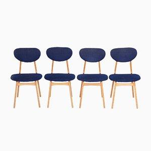 Blaue Mid-Century Stühle aus Eschenholz, 1950er, 4er Set