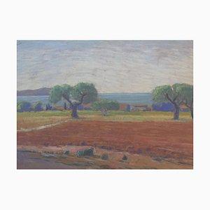 Emaire Oliviers et bord de mer, 1916, Pastel on Paper, Framed