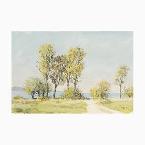 Rudolf Müller (1892, Grenchen - 1972, Bern), Acuarelas, Juego de 6