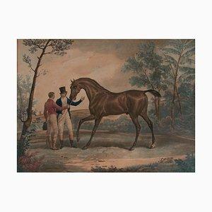 C. Vernet & Jazet, Cheval Attent Au Manège, Copper Engraving