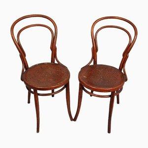 Bentwood Chairs from Jacob & Josef Kohn, Set of 2