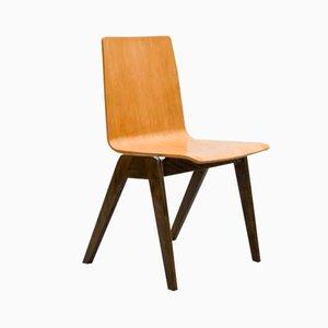 Tschechischer Stuhl im Funkionalistischen Stil, 1960er