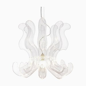LULLABY_CHANDELIER