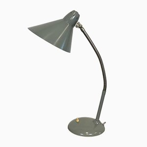 Industrielle graue Schwanenhals Tischlampe von Hala, 1960er