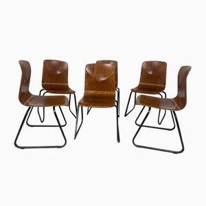Vintage Stühle von Galvanitas, 1960er, 6er Set