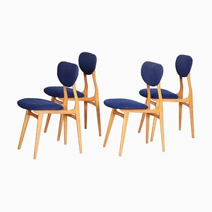 Mid-Century Czechian Ash Blue Chairs, 1950s, Set of 4