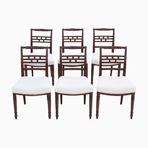 Georgianische Esszimmerstühle aus Mahagoni, 1820er, 6er Set