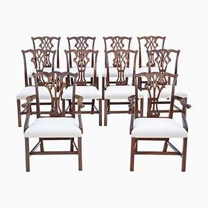 Georgian Mahogany Revival Ribbon Back Dining Chairs, 1900s, Set of 10
