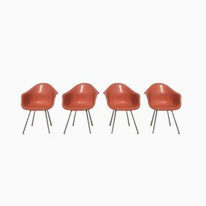 Butacas Dax de Fiberlite naranja de Charles & Ray Eames para Herman Miller. Juego de 4