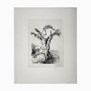 Andreas Paul Weber, Der Morsche Baum, 1973, Lithographie sur Papier Signée à la Main