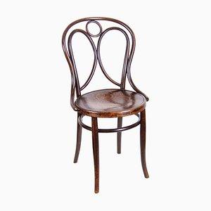 Chaise Nr.19 de Thonet