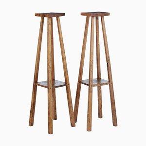 Late 19th Century Rustic Oak Pedestal Stands, Set of 2
