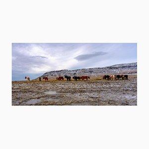 Gilles Morteille, Iceland 9, Digital Print, Framed