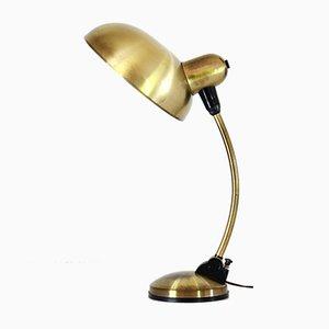 Lámpara de escritorio con estructura de latón flexible, años 50