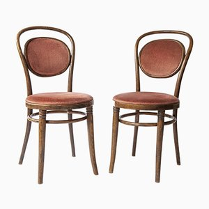 Bentwood Chairs in the Style of Thonet, Set of 2