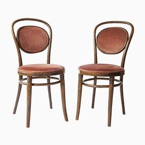 Bugholz Stühle von Thonet, 2er Set