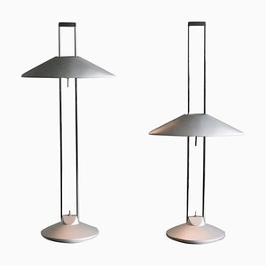 Regina Adjustable Table Lamps by Jorge Pensi, Set of 2