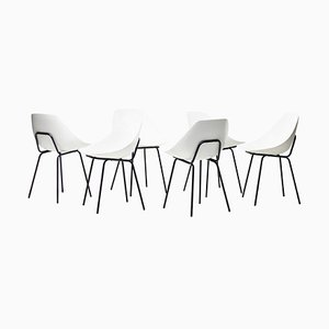 Shell Chairs by Pierre Guariche, Set of 6